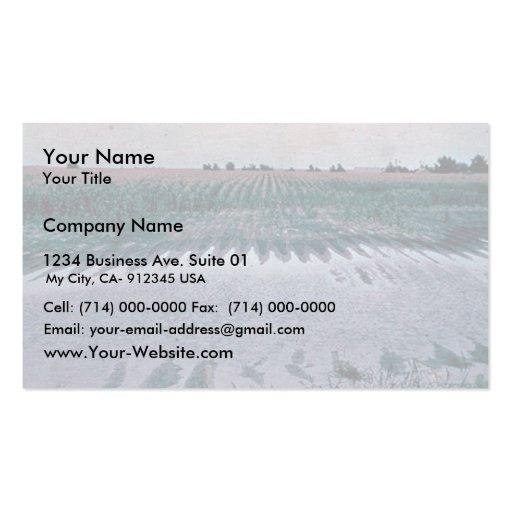 El agujero en campo de maíz propuso ser drenado tarjetas de negocios