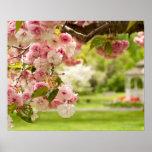 El ajardinar perfecto con el cerezo floreciente ad póster