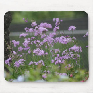 El ajo decorativo florece mousepad