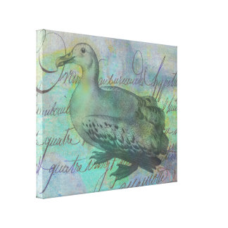 El albatros siguió impresiones en lona estiradas