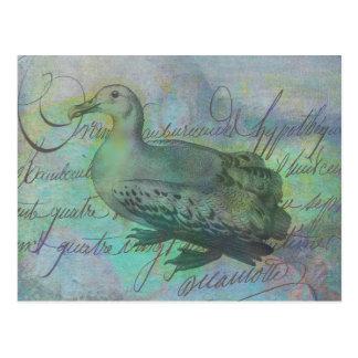 El albatros siguió tarjetas postales
