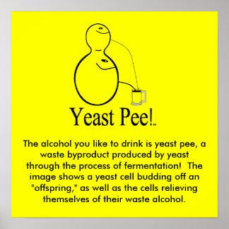 ¡El alcohol (cerveza) que usted bebe es pis de la  Póster