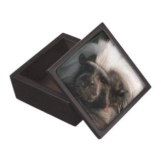 El algodón lindo remató la caja del mono del Tamar Cajas De Recuerdo De Calidad