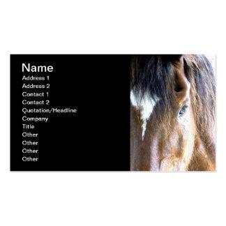 El alma l equina/Relacionado-Negocio del caballo Tarjetas De Visita