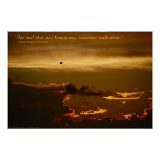 El alma que considera la cita visual de la belleza póster