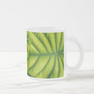 El Alocasia verde Cuprea sale de la isla de Hawaii Taza Cristal Mate