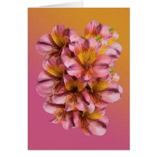 El Alstroemeria florece la tarjeta de nota en blan