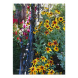 El amarillo de la cerca del hierro florece el post posters