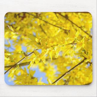el amarillo deja   los gotas Grünes B de COM de Tapetes De Raton