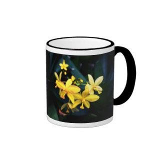 El amarillo etéreo florece la foto escénica de la taza de dos colores