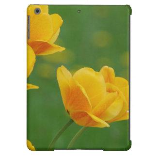 el amarillo florece 14 frecuencia intermedia funda para iPad air