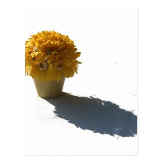 El amarillo florece el cubo y el recorte blancos d tarjetas postales