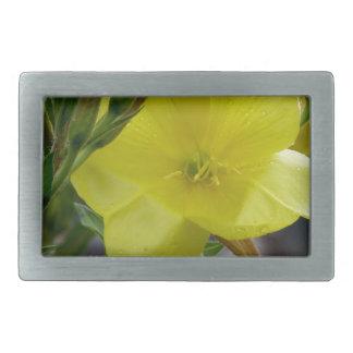 El amarillo florece el primer con las gotitas de hebilla cinturon rectangular