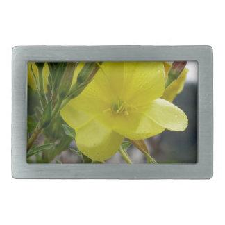 El amarillo florece el primer con las gotitas de hebillas de cinturón rectangulares