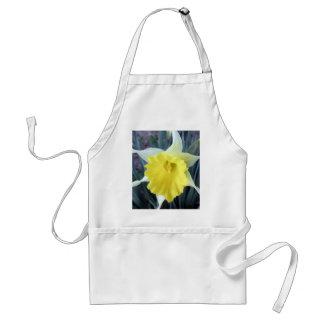 El amarillo florece la foto de la flor del narciso delantal