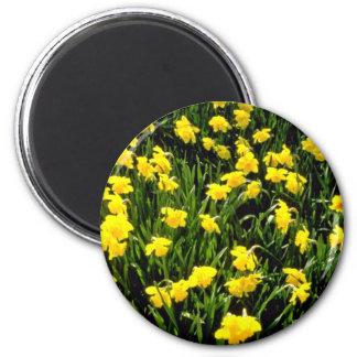 El amarillo florece las flores rojas imán redondo 5 cm