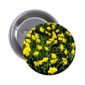 El amarillo florece las flores rojas pin