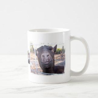 El amarillo grande de la cabra negra observa la taza de café
