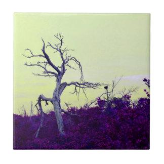 el amarillo púrpura del árbol muerto deja el cielo azulejos ceramicos