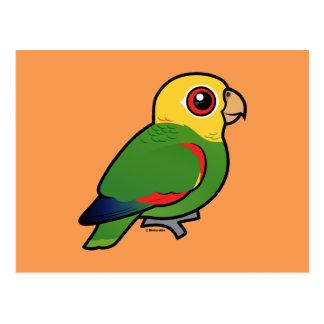 El Amazonas Amarillo-dirigido Tarjetas Postales