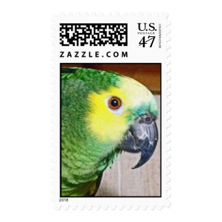 El Amazonas Azul-afrontado Sello Postal
