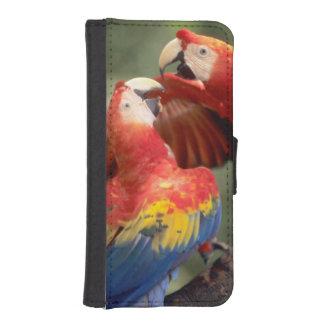 El Amazonas, el Brasil. Pares de Macaws del escarl Funda Tipo Cartera Para iPhone 5