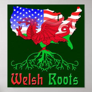 El americano Galés arraiga el poster
