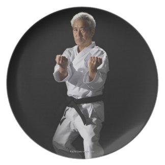 El amo del karate, retrato, estudio tiró 2 plato