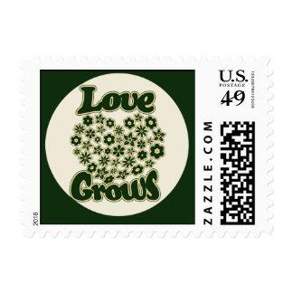 El amor crece envio