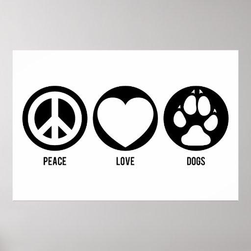 El amor de la paz persigue el poster póster
