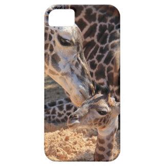 El amor de madre, mamá que besa la jirafa del bebé funda para iPhone 5 barely there