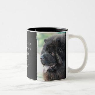 El amor de un perro chino. taza