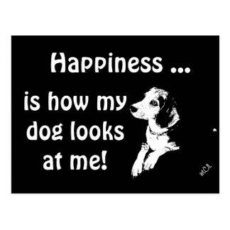 El amor de un perro… tarjetas postales