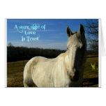 El amor es caballo gris imponente de la confianza felicitación
