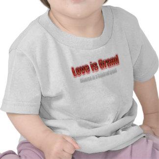 El amor es divorcio magnífico es cientos rojos camiseta