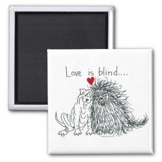 El amor es imán ciego