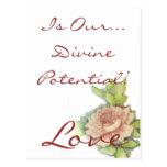 ¡El amor es nuestro… potencial divino! Postal
