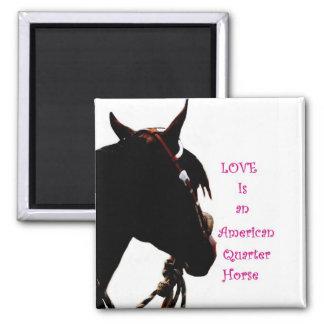 El amor es un imán cuarto del caballo