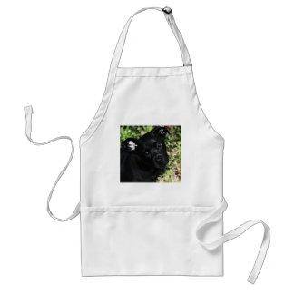 El amor es un perrito negro delantal