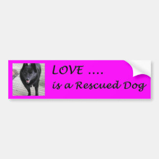 El amor es un perro rescatado etiqueta de parachoque