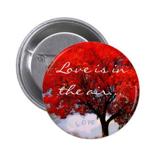 El amor está en el aire… pin redondo de 2 pulgadas