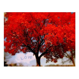 El amor está en el aire… tarjeta postal