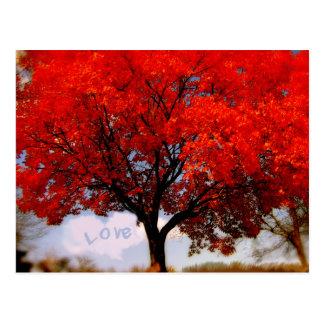 El amor está en el aire… tarjetas postales