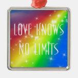 El amor no sabe ningún límite ornamentos de navidad