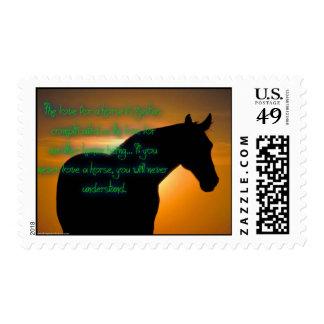 El amor para un sello del caballo