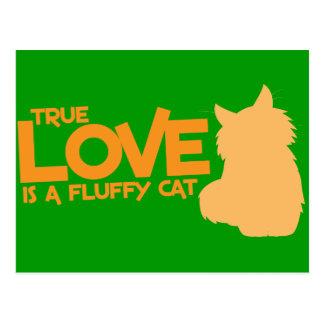 El AMOR VERDADERO es un gato mullido Postales