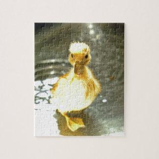El anadón tiene un baño rompecabeza con fotos