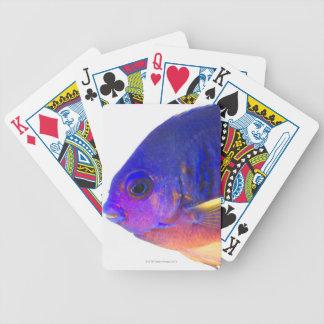 El angelfish two-spined baraja cartas de poker