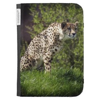 El Animal-Amante salvaje del gato del guepardo enc