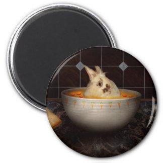 El animal - conejito - allí es una liebre en mi imán redondo 5 cm